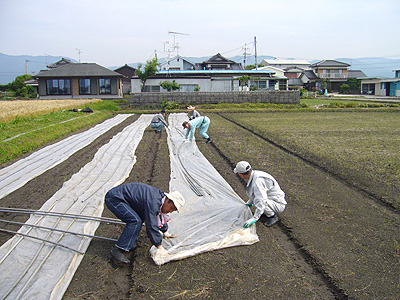 農作業_02